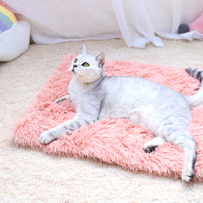 Cotton Candy Furry Pet Sleeping Mat