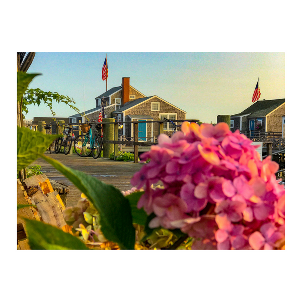 The Cottages and Floral