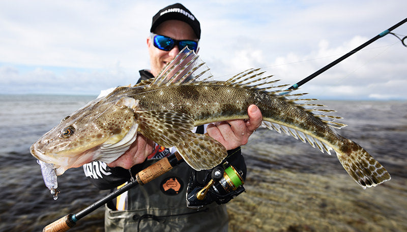 The ultimate guide to catching flathead on lures