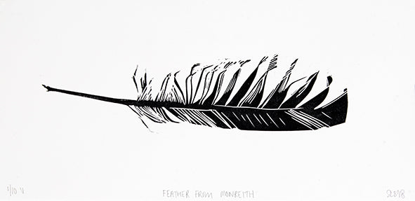 Feather from Monreith