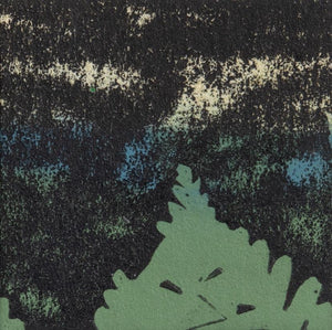 Shaded Woods Monoprints