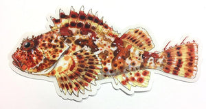 Abachar Sculpin - Sticker 7""