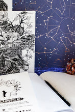 Load image into Gallery viewer, Starry Owl Graph Notebook