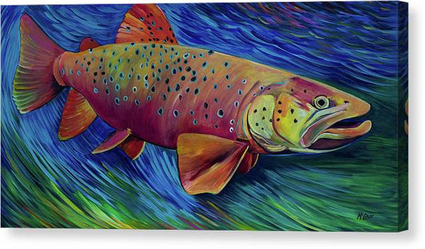 Brown Trout - Canvas Print