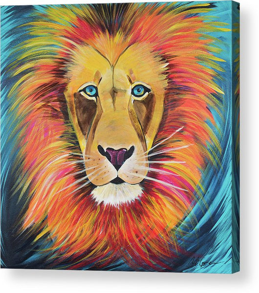 Fierce Lion - Acrylic Print