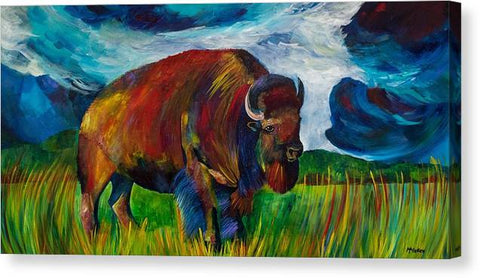 Montana Bison - Canvas Print