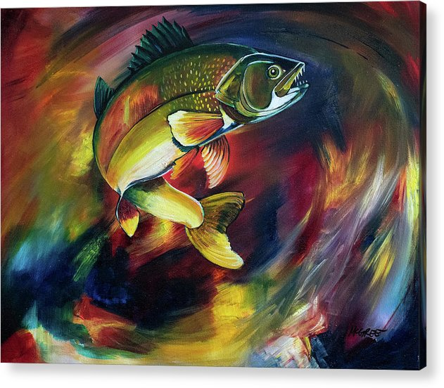 Walleye - Acrylic Print