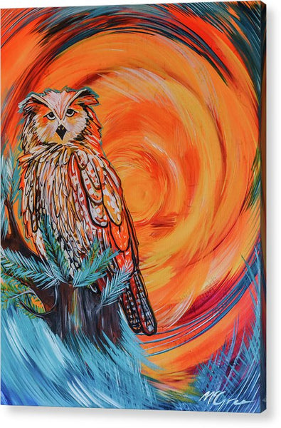 Wise Old Owl - Acrylic Print