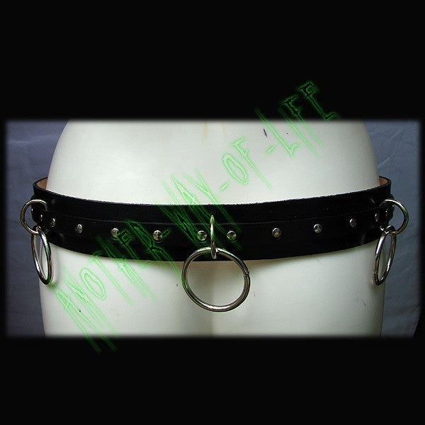 Punk belt with ringsAnother Way of Life