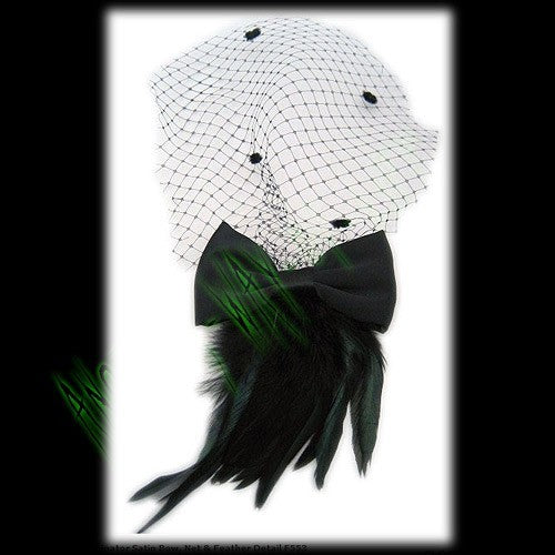 Fascinator Satin Bow, Net & Feather DetailAnother Way of Life