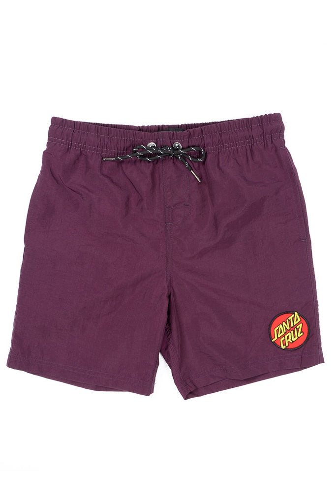 Santa Cruz Youth Classic Dot Beach Short Grape