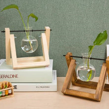 Load image into Gallery viewer, Glass and Wood Terrarium Vase for Hydroponic Plant