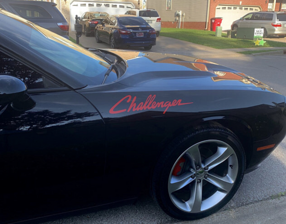 Vinyl Decal Fits Challenger Dodge Mopar Stickers Racing Stripes (Unofficial)