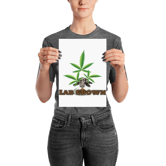 LAB GROWN - Poster - HTBADD
