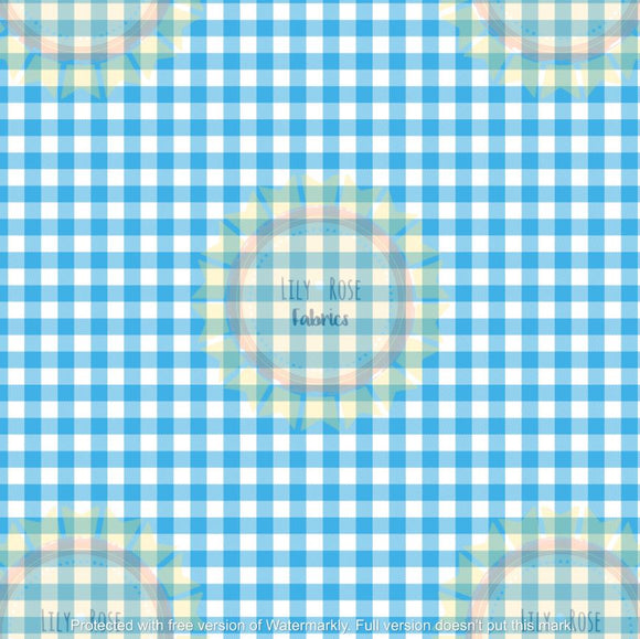 Blue Gingham *PREORDER*