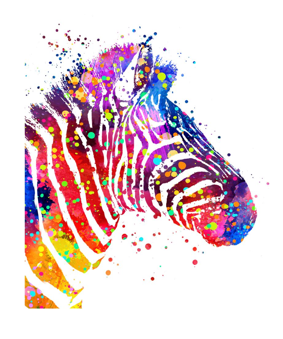 Rainbow Zebra Topper *RETAIL*