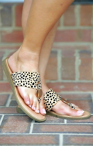 Live Wildly Leopard Print Sandals