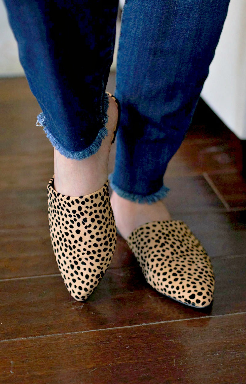 Load image into Gallery viewer, Can't Go Wrong Leopard Print Mules