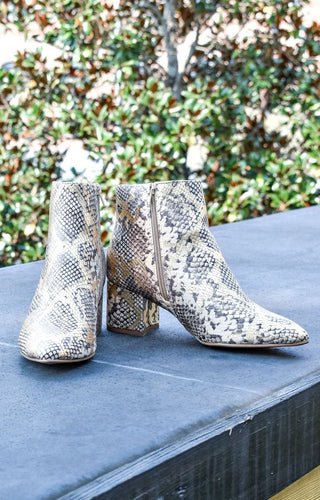 My Sidekick Snake Print Ankle Booties