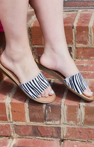 Best Behavior Zebra Print Slides