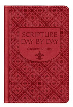 Scripture Day By Day Book , 4 pcs