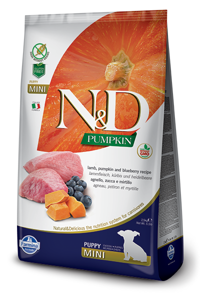 N&D Lamb & Blueberry Puppy Mini Dry Dog Food - City Paws Pet Club