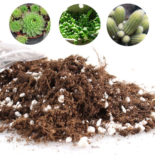 2019 Peat Soil Peat Moss And Perlite Mixed Soil Well Drained Mix Peat And Sand Soil