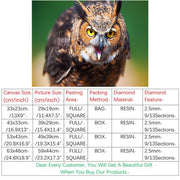 5D DIY Embroidery Diamond Painting Full Square The Owl Gift Arts Crafts&Sewing Needlework Home Decoration Wall Painting Crpsen