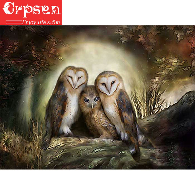 5D DIY Embroidery Square Diamond Painting Full Night Owl Gift Needlework Crafts&Sewing Home Decoration Wall Painting Crpsen