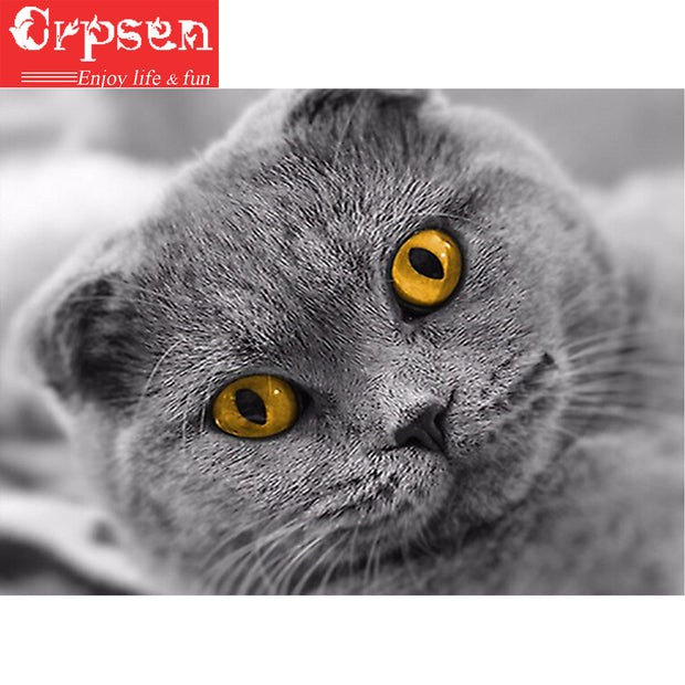 5D DIY Embroidery Square Diamond Painting Full The Cat Gift Arts Crafts&Sewing Needlework Cross Stitch Home Decoration Crpsen