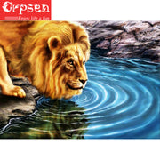 5D Embroidery,Diamond Square Drill Lion Animal,Needlework,Decoration Arts Wall Painting,Diamond Painting,Crafts&Sewing,Crpsen