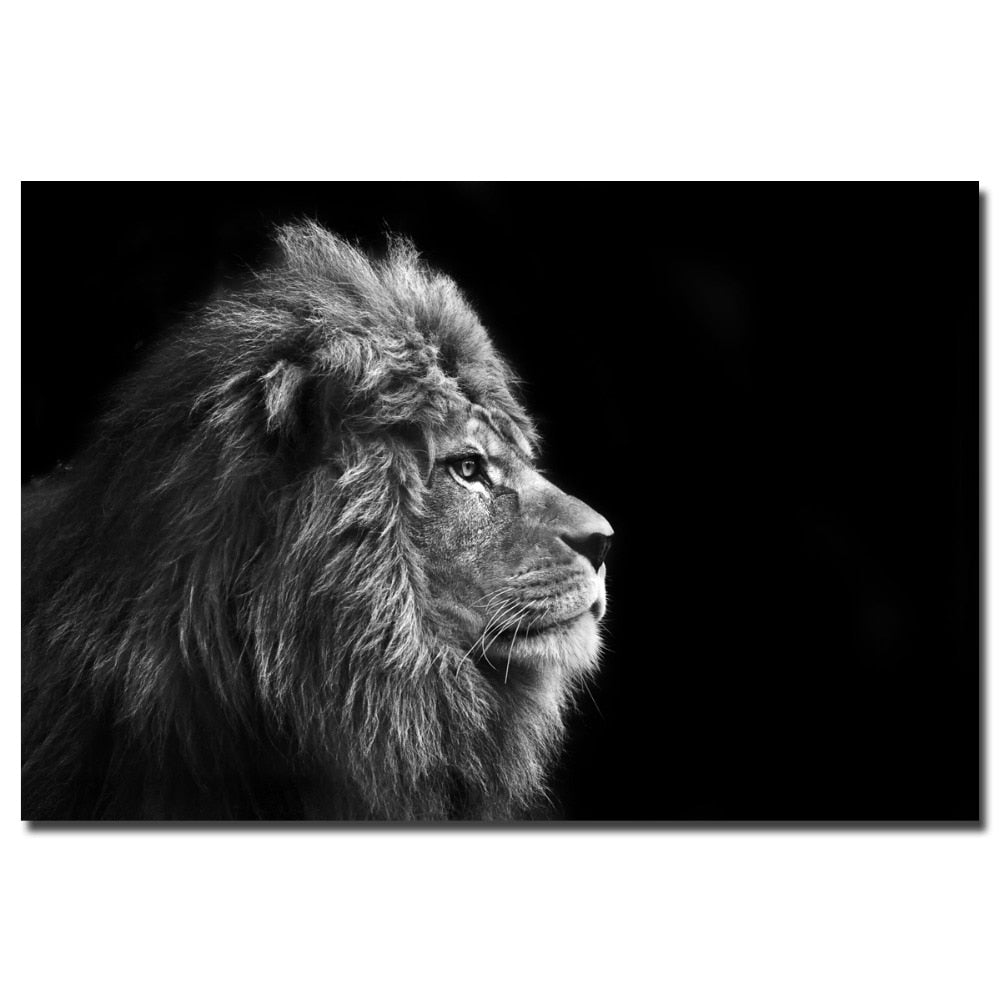 Black and white wall art animal portrait lion pictures canvas print unframed painting for home decor