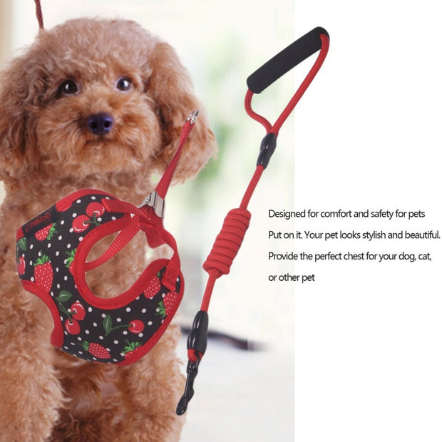 Breathable Soft Cotton Fibers Adjustable Pet Harness And Leash Set Professional Dog Chest Straps For Small Medium Dog
