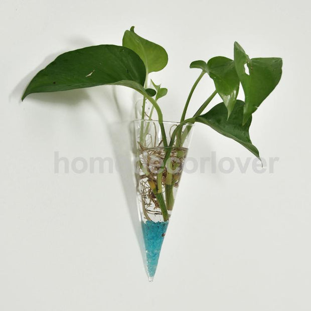 Clear Cone Glass Wall Hanging Flower Vase Plant Bottle Home Decor
