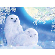 Diy Couple Snowy Owl Round Diamond Painting Animal Series Diamond Painting Full Drill Square Rhinestones Embroidery Cross-stitch