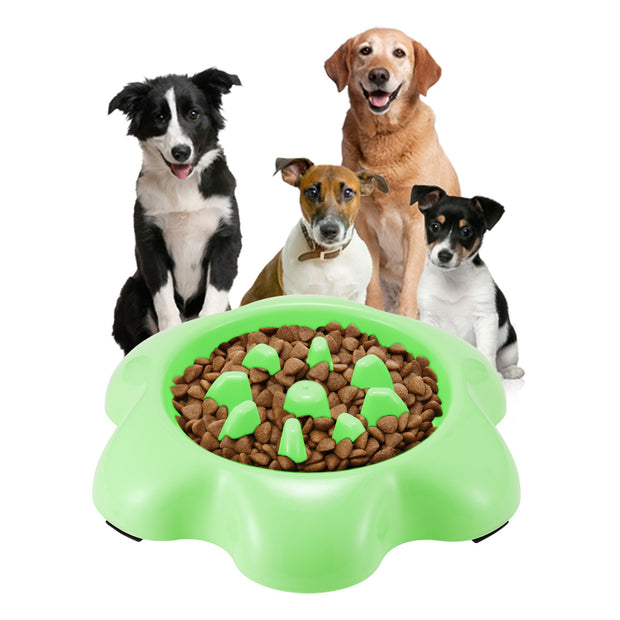 Pet Dog Feeder Automatic Electronic Digital Display Bowl Dispenser Feeder For Dog Cat 2018