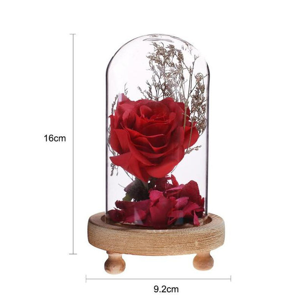 Romantic Red Rose In A Glass Dome On A Wooden Base Ornaments Festival Decor Birthday Gifts For Christmas Mother'S Day Gifts
