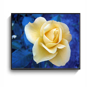 Rose Oil Painting On Canvas Posters Art Home Decoration Frameless Draw Can Be Used For Room And Living Room Decoration