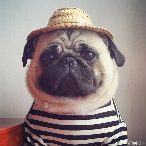 Summer Pet Cap Dog Cat Straw Hat Headwear Accessories French Bulldog Pug Sunbonnet Photo Props