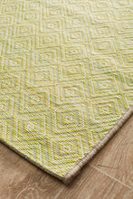 Paris Indoor Outdoor Light Green Rug