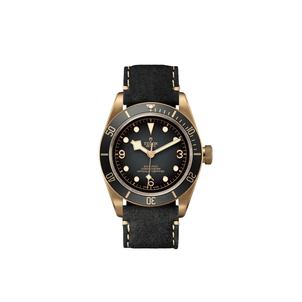 Tudor Watch Tudor Black Bay Bronze Watch M79250BA-0001