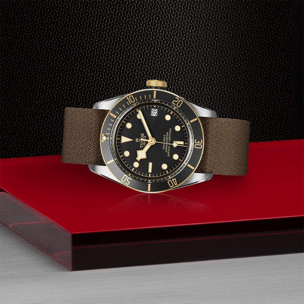 Tudor Watch Tudor Black Bay S&G Watch M79733N-0005