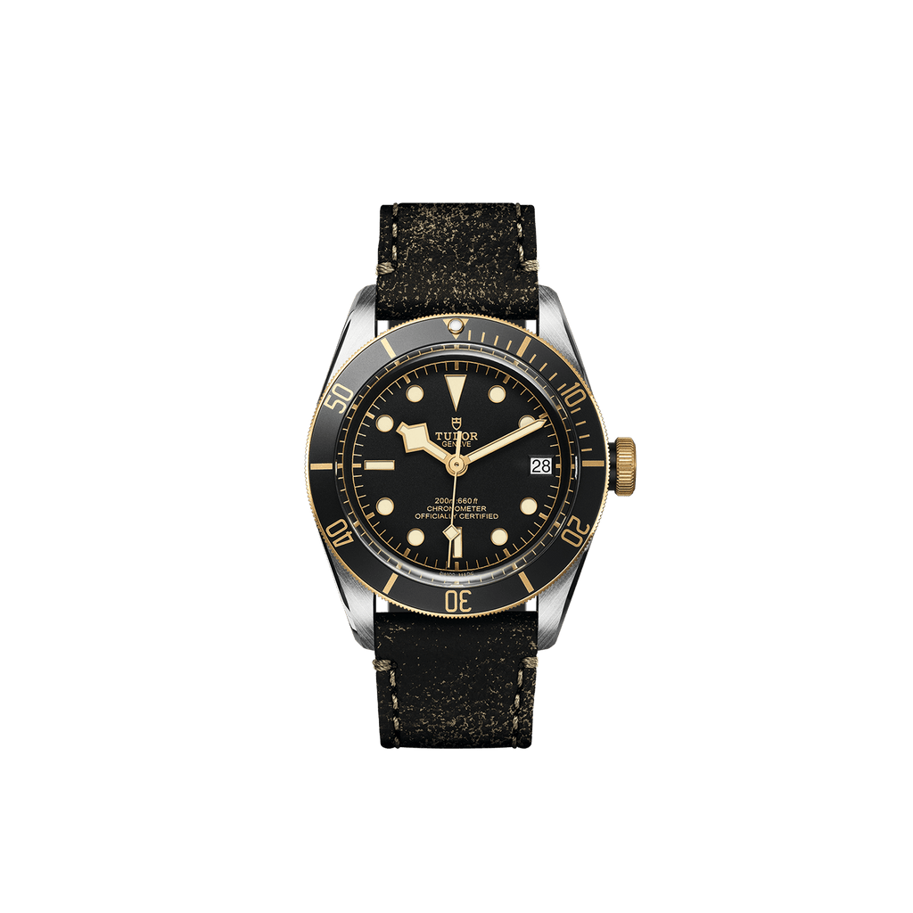 Tudor Watch Tudor Black Bay S&G Watch M79733N-0007