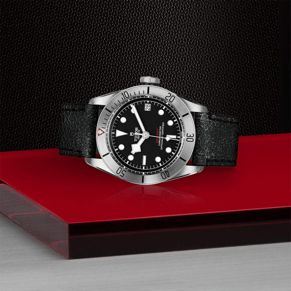 Tudor Watch Tudor Black Bay Steel Watch M79730-0005
