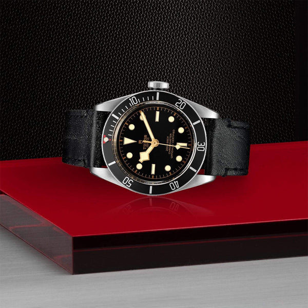 Tudor Watch Tudor Black Bay Watch M79230N-0008