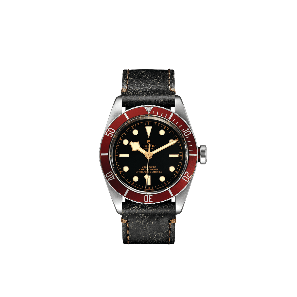 Tudor Watch Tudor Black Bay Watch M79230R-0011