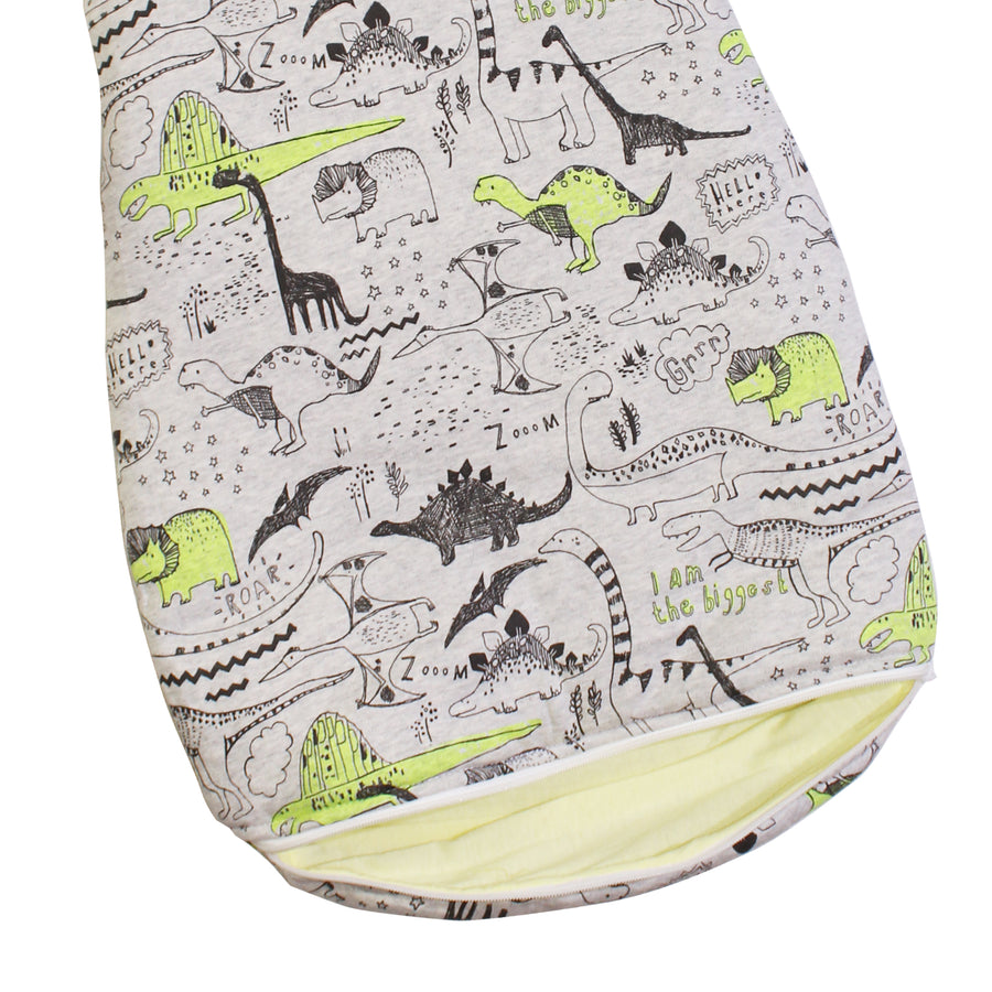 Sleeping Bag (0-6 Months) - Dino - kadambaby.com