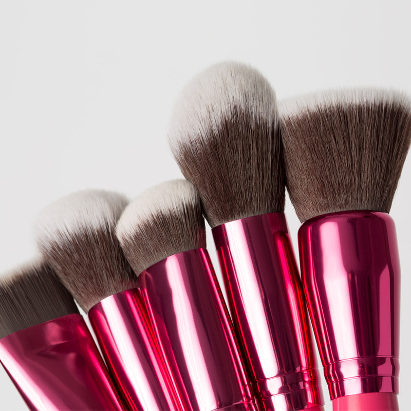 Sculpt & Blend Fan Faves 10 piece Brush Set