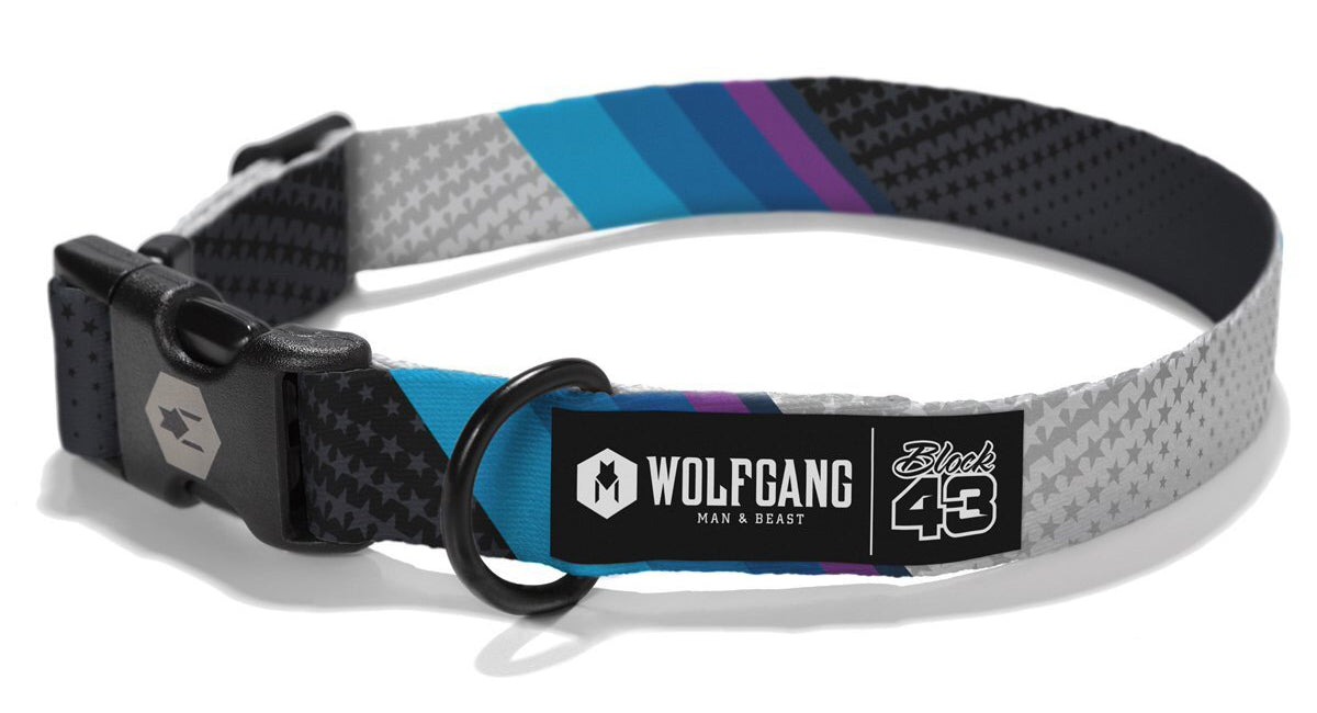 A Wolfgang brand collar.