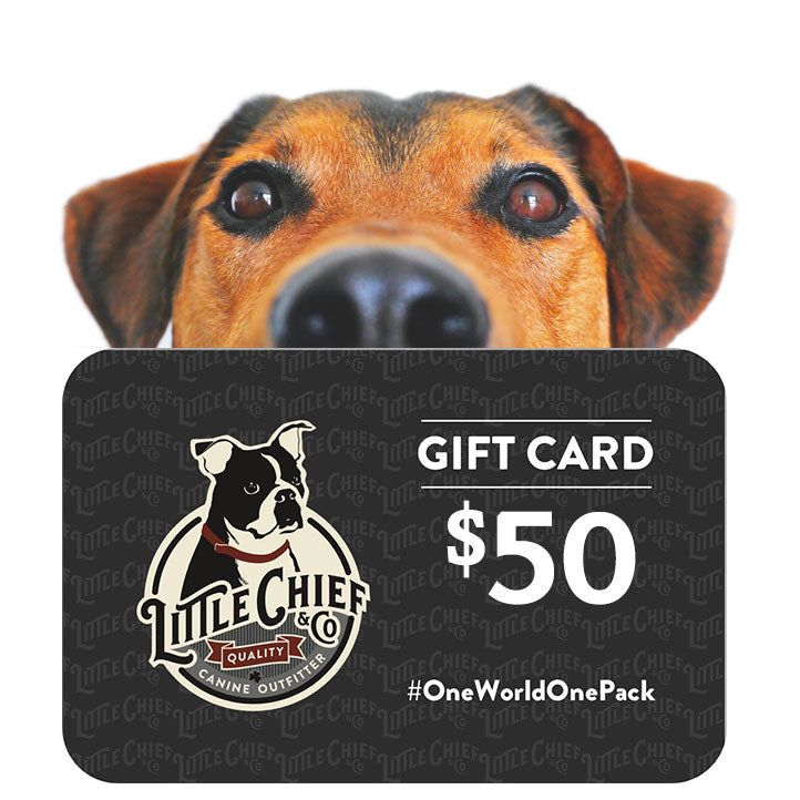 Image of a $50 Little Chief and Co gift card with a cute dog's head looking over it from the back.